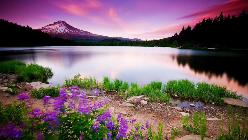 Beautiful-Sunrise-Nature-Wallpaper